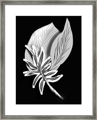 Leaf Ray Framed Print