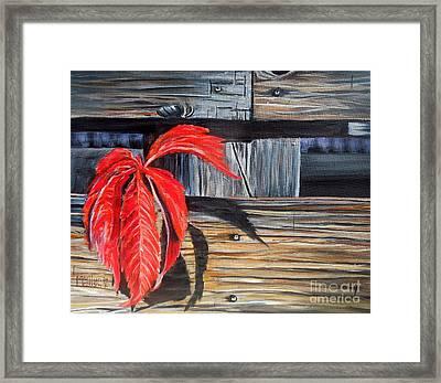 Leaf Shadow 2 Framed Print by Marilyn  McNish