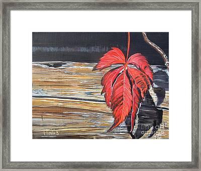 Leaf Shadow Framed Print