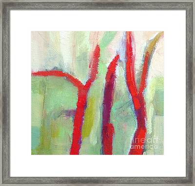 Leafless II  Framed Print by Virginia Dauth
