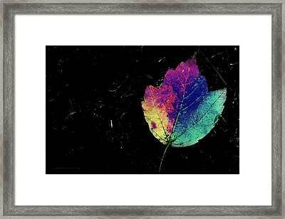 Leafy 2 Framed Print by Kathy Barney
