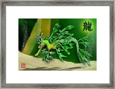 Leafy Sea Dragon Framed Print by John Wills