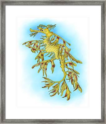 Leafy Sea Dragon Framed Print by Roger Hall