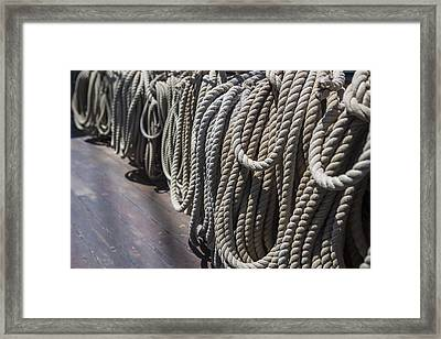 League Of Rope Framed Print by Scott Campbell