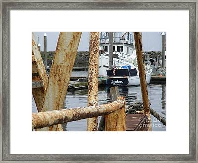 Lealea In Harbor Framed Print