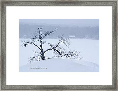 Lean On Me Framed Print by Ann Murphy