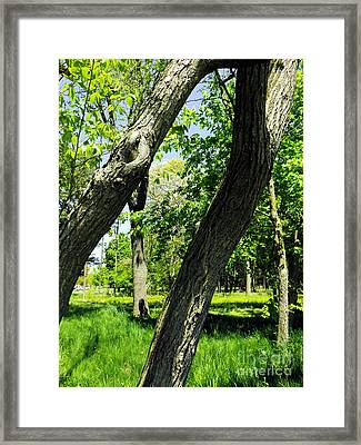 Framed Print featuring the photograph Lean On Me by Robyn King