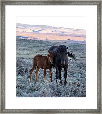 Lean On Me... Ruby And Coal Framed Print