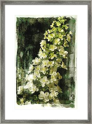 Lean With Me Framed Print by Davina Washington