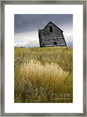 Leaning A Little Framed Print by Bob Christopher