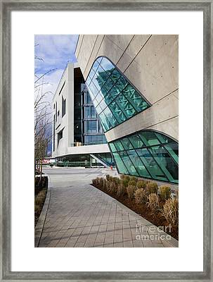 Leaning Framed Print by Chris Dutton