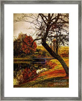 Leaning Toward Fall  Framed Print
