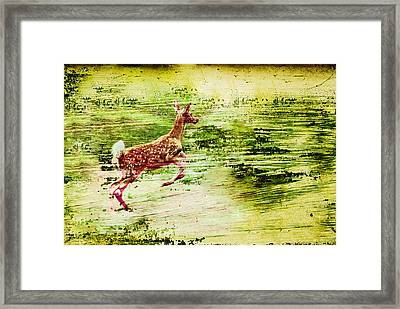 Leap Into Spring Framed Print