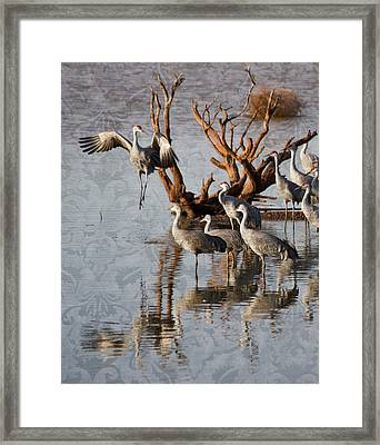 Leap Of Faith Framed Print by Beverly Parks