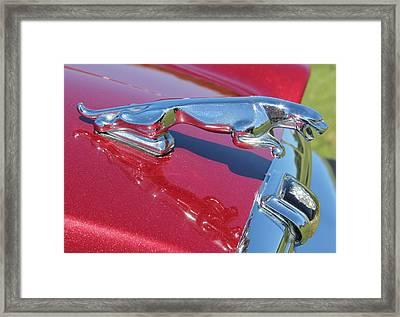 Leaper Hood Ornament On Red Jaguar Framed Print by Mark Steven Burhart
