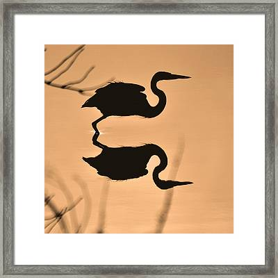 Leaping Heron Silhouette - 9381h Framed Print by Paul Lyndon Phillips