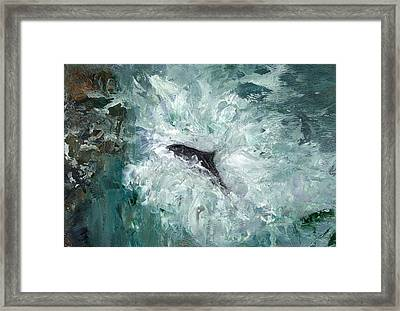Leaping Salmon Framed Print by Carol Rowland