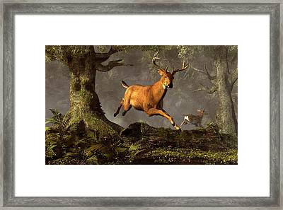 Leaping Stag Framed Print