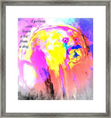 You Can Learn A Lot From The Dog Framed Print by Hilde Widerberg