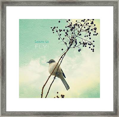 Learn To Fly Framed Print