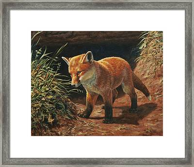 Red Fox Pup - Learning Framed Print by Crista Forest