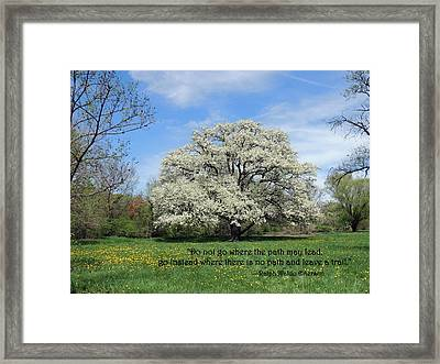 Leave A Trail Framed Print
