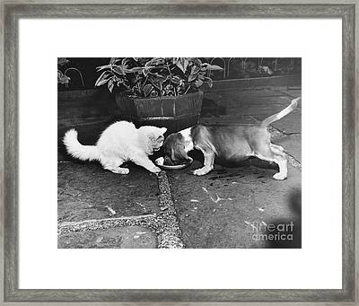 Leave Some Framed Print by M E Browning