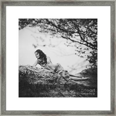 Leaves And Roots Framed Print by Alexander Pereverzov