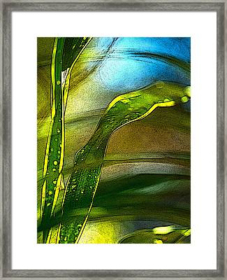 Leaves And Sky Framed Print
