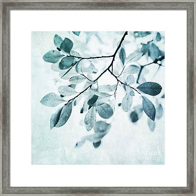 Leaves In Dusty Blue Framed Print by Priska Wettstein