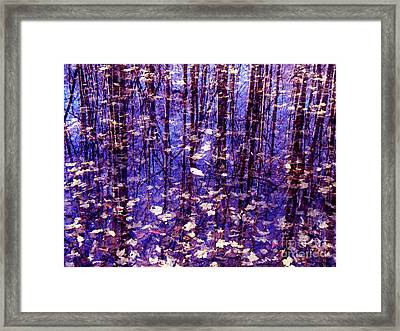 Leaves In Water Framed Print