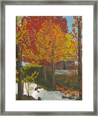 Leaves Of Change Framed Print
