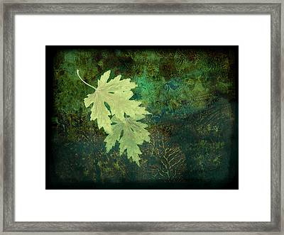 Leaves On Green Framed Print by Ann Powell
