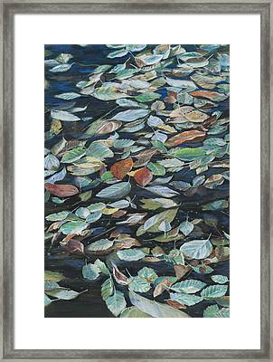 Leaves On Pond Framed Print