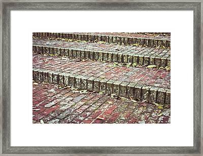 Leaves On Steps Framed Print by Tom Gowanlock