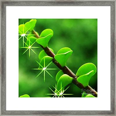 Leaves With Stars Framed Print