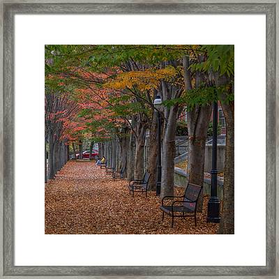 Framed Print featuring the photograph Leaving by Glenn DiPaola