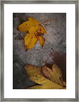 Leaving Quietly Framed Print by Odd Jeppesen