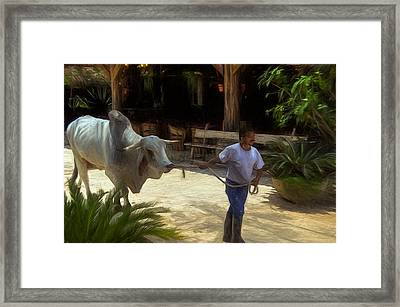 Led By The Nose Framed Print by John K Woodruff