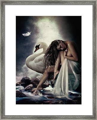 Leda And The Swan Framed Print by Shanina Conway