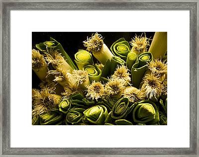 Leeks Framed Print by Jean Noren