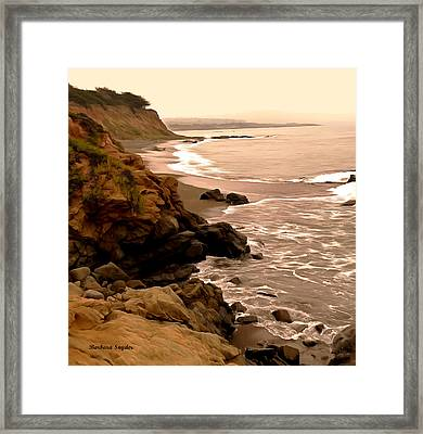 Leffingwell Landing Cambria Detail 2 Framed Print by Barbara Snyder