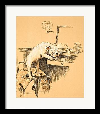 Prints Of Dog Breeds Framed Prints