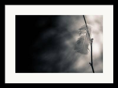 Left Alone Framed Prints