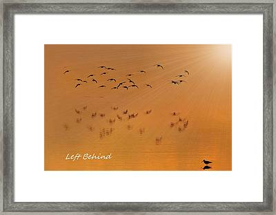 Framed Print featuring the photograph Left Behind Too by Laura Ragland