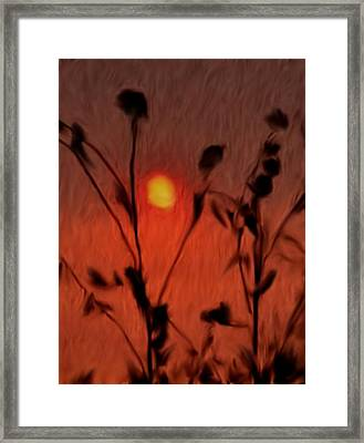Left-handed Sundown Framed Print