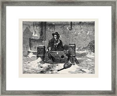 Left Out In The Cold Framed Print by English School