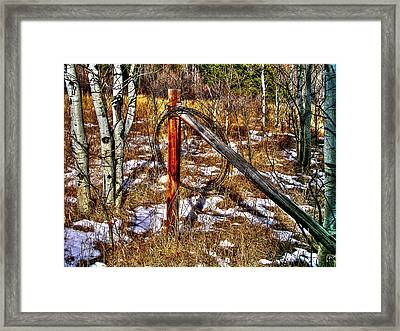 Leftovers Framed Print by Craig T Burgwardt