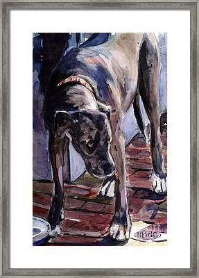 Legs Framed Print by Molly Poole
