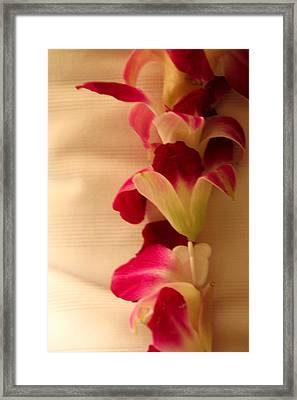 Framed Print featuring the photograph Lei  by Cathy Donohoue